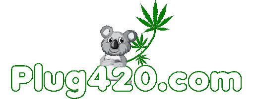 Plug420 Community